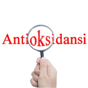 Antioksidansi_600x600
